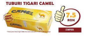 CAMEL200